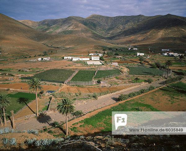 Landschaft in der Nähe von Toto  Fuerteventura  Kanarische Inseln  Spanien  Atlantik  Europa