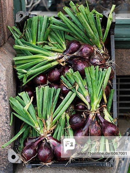 Nahaufnahme von roten Zwiebeln in Holzkiste zum Verkauf