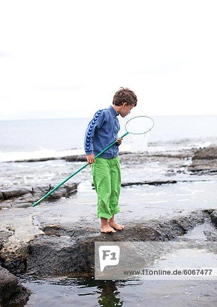 Felsbrocken stehend Junge - Person halten Meer Netz Schmetterling