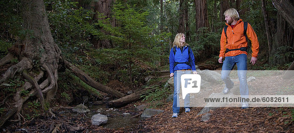 Laubwald  wandern