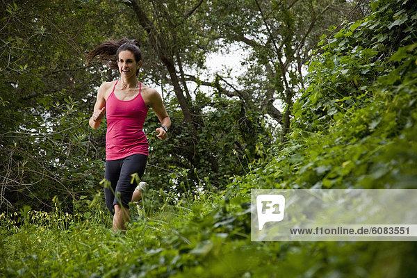 Laubwald  Frau  folgen  rennen  grün  Wiese