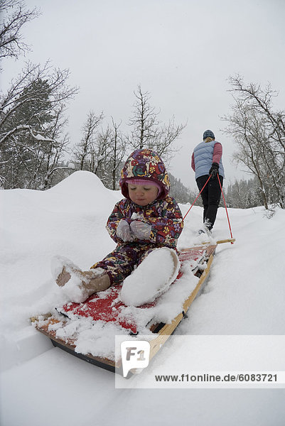 ziehen  folgen  Blizzard  Tochter  Mutter - Mensch  Colorado  Durango  Schlitten