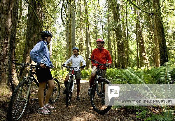 Berg  fahren  Wald  Ende  Fahrrad  Rad  3  Pause  einstellen  dicht