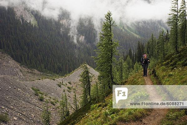 folgen  Rucksackurlaub  früh  wandern  Kootenay Nationalpark