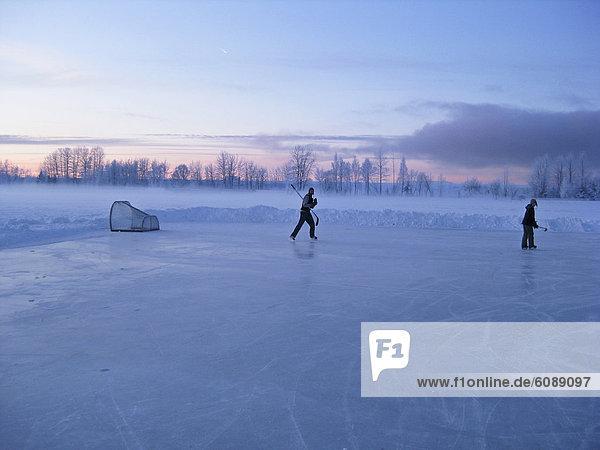 Spiel  2  jung  Anchorage  Hockey  Teich