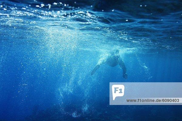 Tropisch  Tropen  subtropisch  Wasser  Fröhlichkeit  Entspannung  Unterwasseraufnahme  Insel  Ansicht  schwimmen  Schwimmer  Fiji