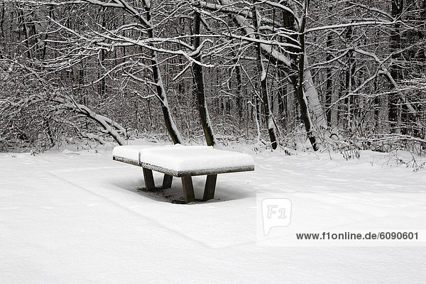 Deutschland  Snowy ping pong table