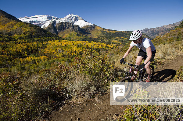 Female mountain biker riding in the mountains  Provo  Utah.