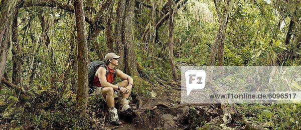 Mann  ruhen  Regenwald  wandern  jung