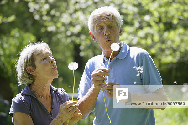 Germany  Bavaria  Senior couple blowing blowball