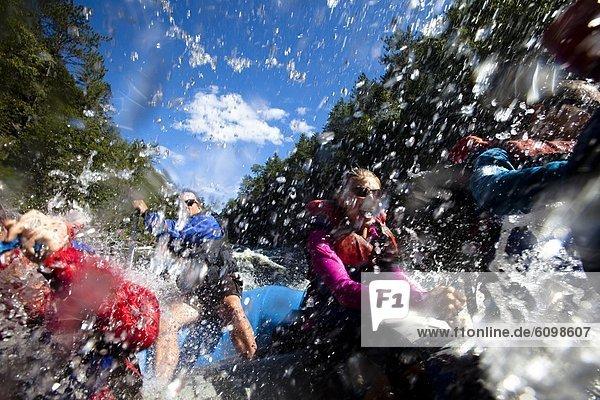 Wildwasser  Maine  Rafting