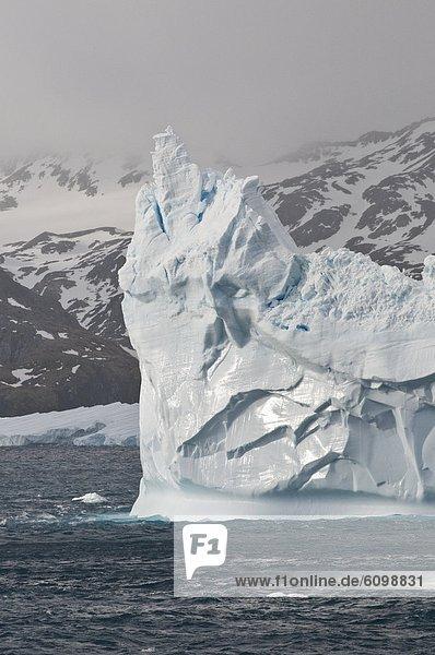 Eisberg  Südgeorgien