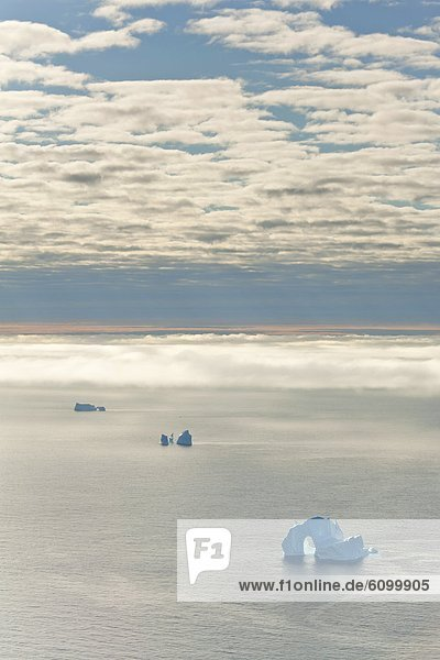 Seascape with icebergs  Baffin Bay  Greenland waters.