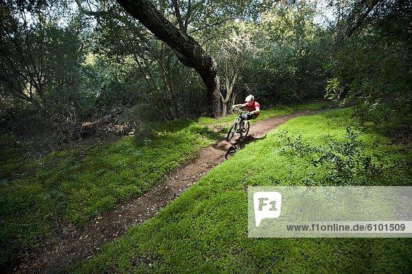 Berg  Mann  fahren  Weg  grün  Überfluss  extrem  umgeben  jung  Klee  Downhill mountain biking