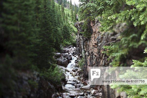 Frau  Fröhlichkeit  Schönheit  Überfluss  Wald  Fluss  wandern  Ansicht  jung
