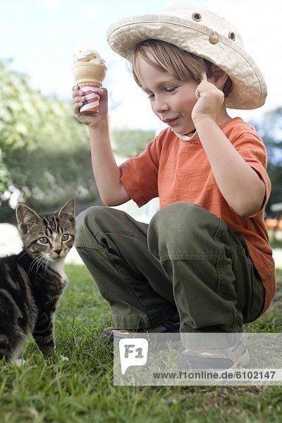 Junge - Person  Spiel  Kätzchen  Katze