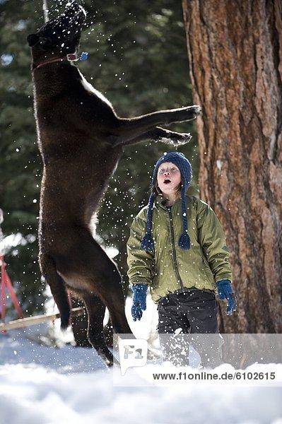 Junge - Person  Überraschung  Hund  See  Kunststück  Kalifornien
