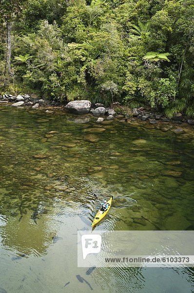 Woman paddling a sea kayak  Abel Tasman National Park  Nelson  New Zealand.