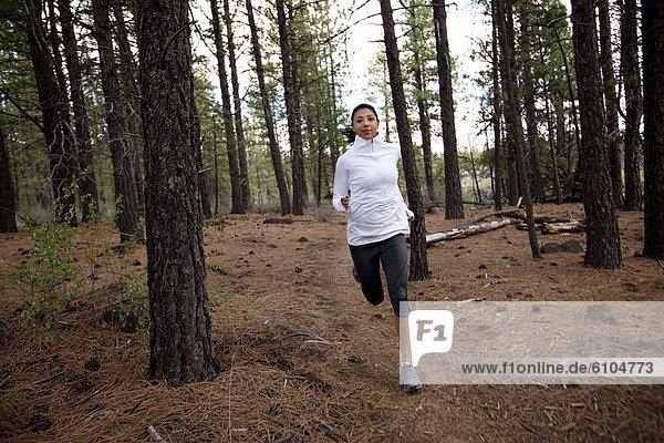 Weibliche Trail-Läufer im Wald.