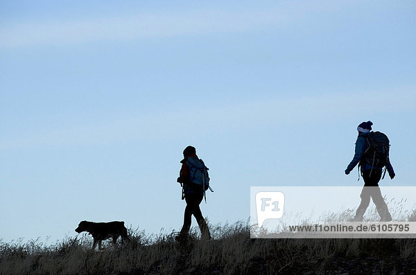 Außenaufnahme  Morgen  Silhouette  See  früh  wandern  2  Vorgebirge  Kalifornien