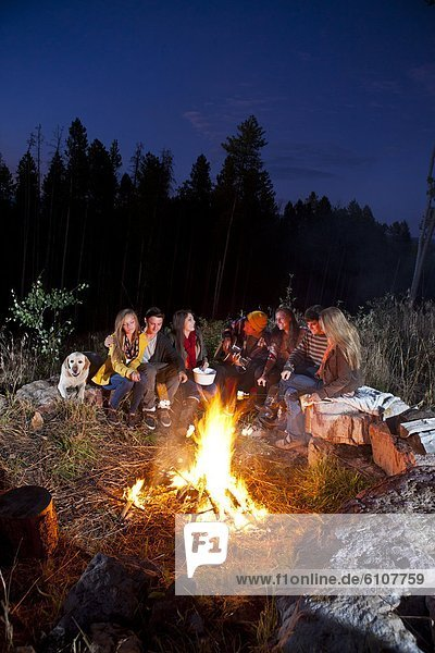 Junge - Person  Sommer  Abend  camping  Gesang  Feuer  Braten  Mädchen  Marshmallow