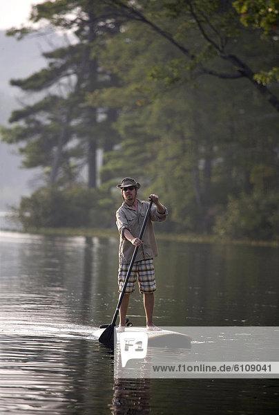 Otter  Lutrinae  Mann  fahren  See