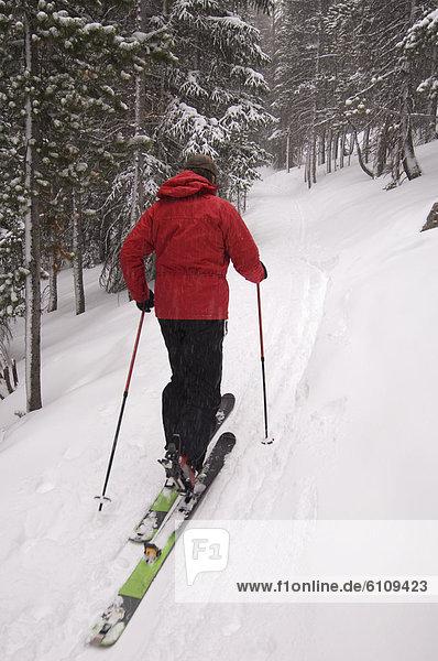 Mann  Skisport  unbewohnte  entlegene Gegend  Colorado