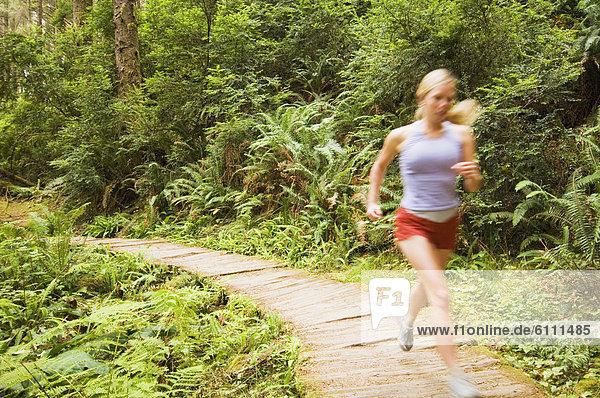 Wald  Holzweg  Läufer