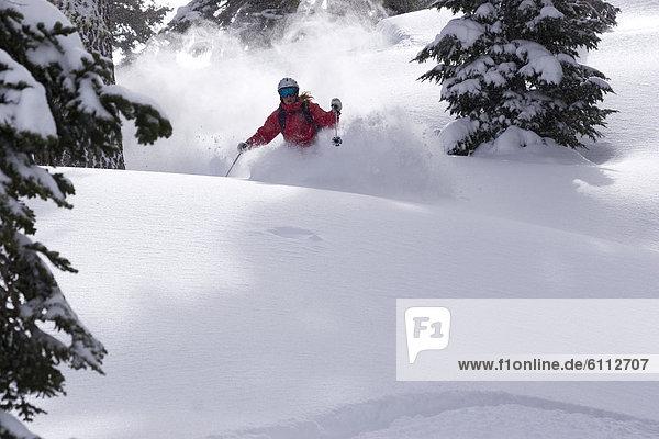Frau  Skisport  Gesichtspuder  tief