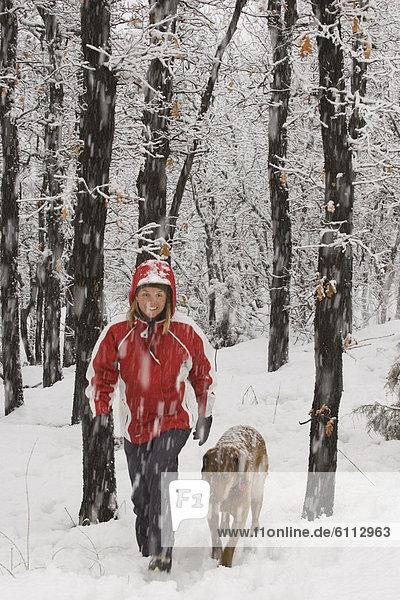 Frau  gehen  Hund  Blizzard