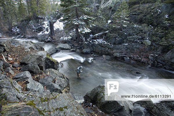 Winter  Fluss  Fischer
