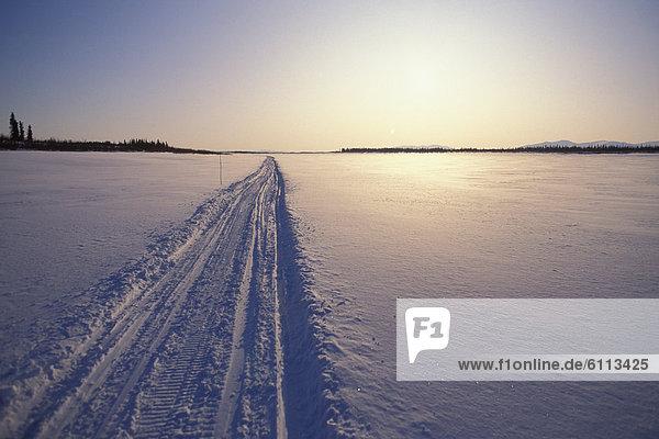 folgen  Arktis  Schneemobil  Tundra