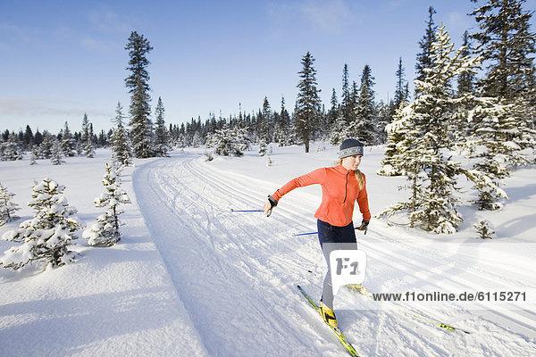 Frau  Skisport  jung