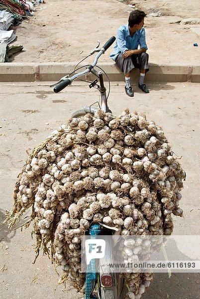 Frische  Straße  Knoblauch  China  Markt  Straßenverkäufer