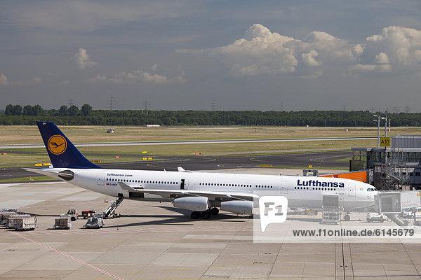 Flugzeug der Lufthansa auf dem Flughafenfeld  Airbus A340-300  Flughafen  Düsseldorf  Rheinland  Nordrhein-Westfalen  Deutschland  Europa