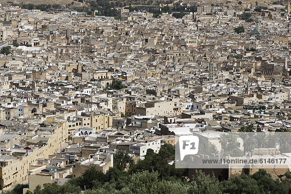View across the Old Town of Fes or Fez  FËs-Boulemane  Morocco  Maghreb  North Africa  Africa