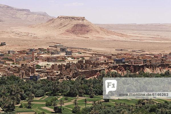 Blick auf Tinghir  Souss-Massa-Dara'  Königreich Marokko  Maghreb  Afrika