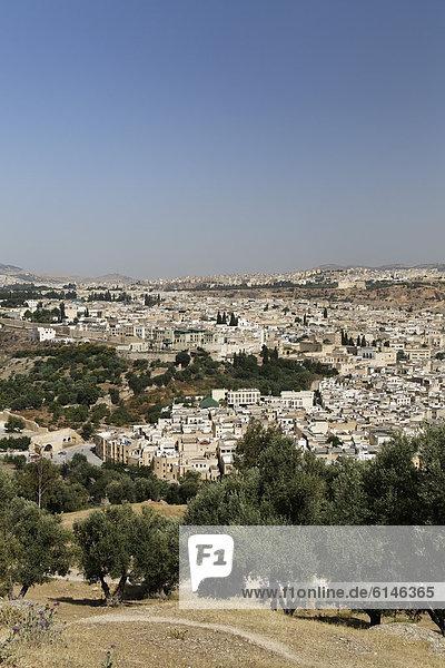 Blick auf die Altstadt von FËs  FËs-Boulemane  Königreich Marokko  Maghreb  Afrika