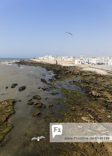 View of the Medina  UNESCO World Heritage Site  Essaouira  Marrakech-Tensift-El Haouz  Morocco  Maghreb  North Africa  Africa