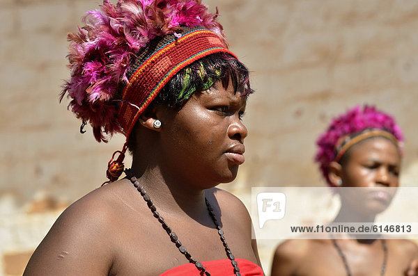 One of the wives of King Fon Abumbi II in traditional costume dancing  palace fo Bafut  one of the traditional kingdoms of Cameroon  near Bamenda  north west Cameroon  Central Africa  Africa