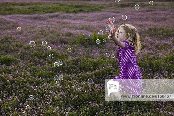 Europäer  Blume  Blase  Blasen  nachlaufen  Feld  Mädchen