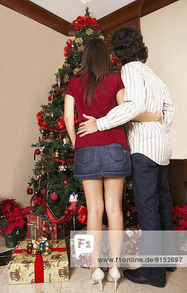 sehen  Baum  Hispanier  Weihnachten