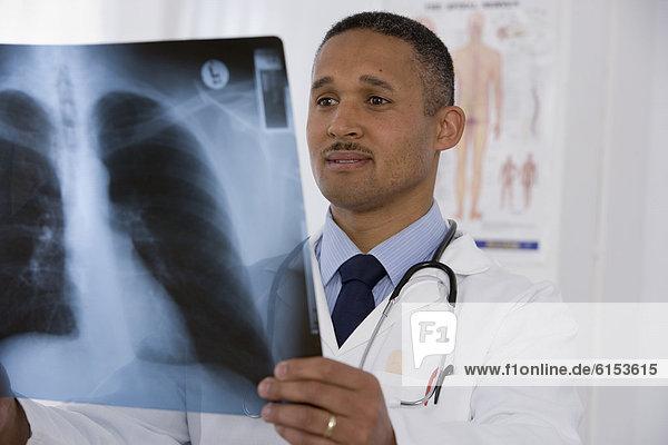 sehen  Arzt  Röntgenbild