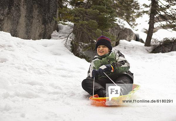lächeln  Junge - Person  fahren  Hispanier  Schlitten  Schnee