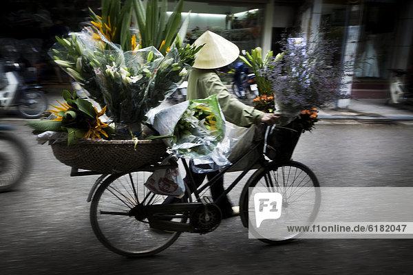 tragen  Blume  Mensch  Fahrrad  Rad  vietnamesisch