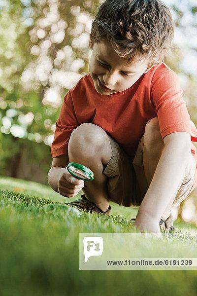 Europäer  sehen  Glas  Junge - Person  Gras  Aussichtsplattform