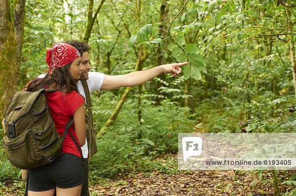 Zusammenhalt  Hispanier  Wald  wandern