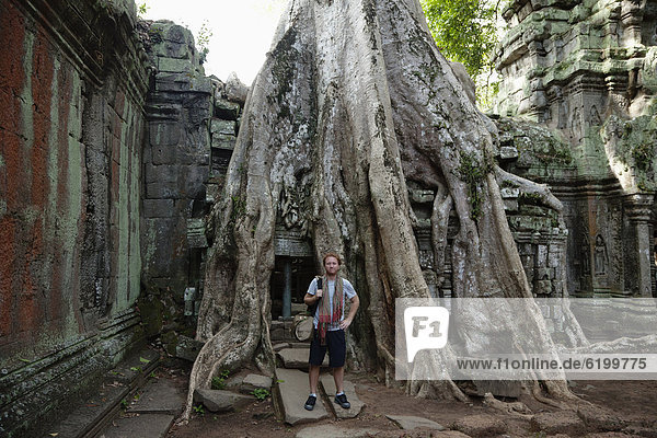 stehend  Europäer  Mann  Baum  Ruine  Wurzel  groß  großes  großer  große  großen