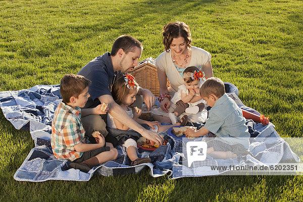 Europäer  Fröhlichkeit  Picknick