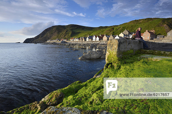 Europa Großbritannien Landschaft Küste grün Alge Dorf Kai angeln Schottland